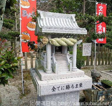 勝ちま栗 乃木神社