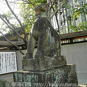 車折神社狛犬